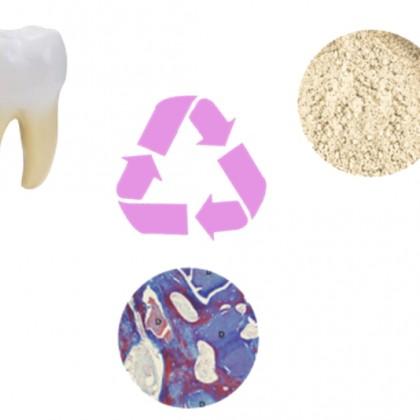 牙骨粉新趨勢